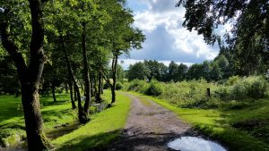 Activiteiten in de prachtige Ardennen (Durbuy)? Wij vonden de 16 leukste!